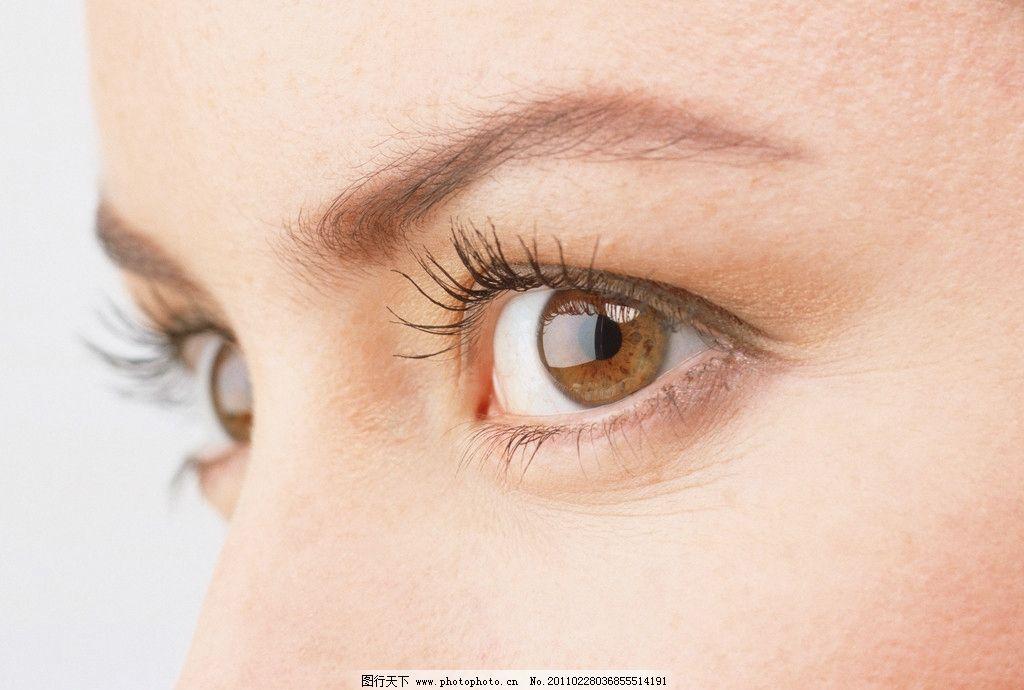 人眼 迷人 明亮 眉毛 眼睫毛 美丽眼睛 眼睛特写 眼睛美女 心灵窗口