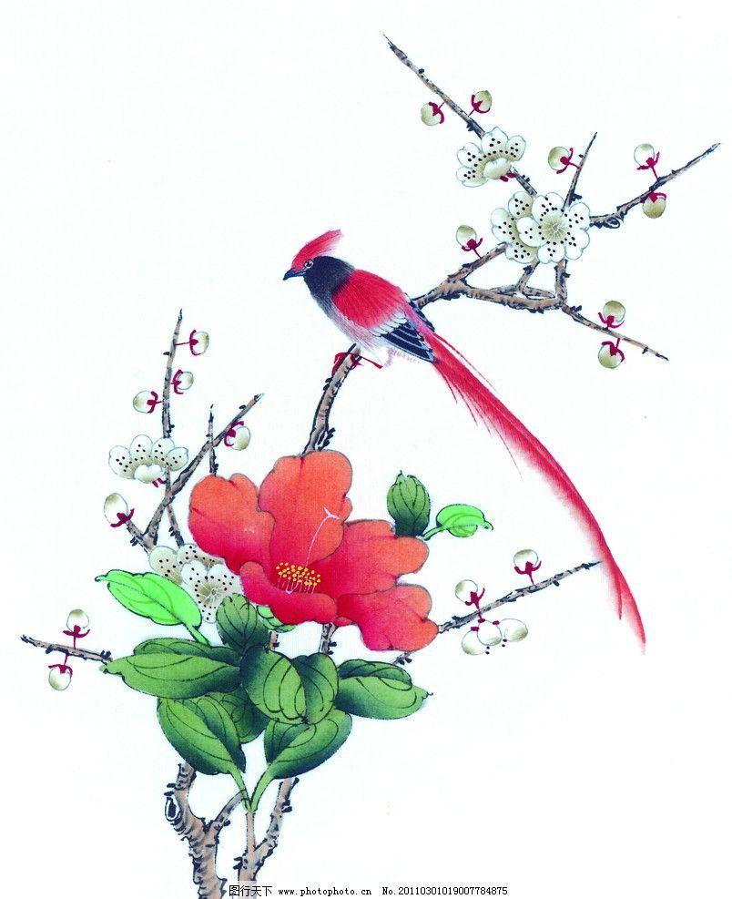 工笔画 梅花 白梅 工笔 梅枝 寒梅 梅花树 树枝 工笔花鸟 鸟 国画