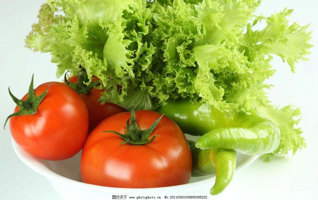 生菜 西红柿