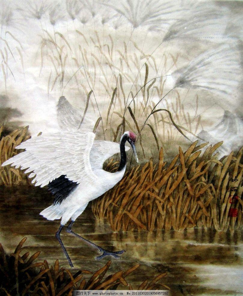 丹顶鹤 绘画 中国画 彩墨画 工笔画 动物画 鸟 白鹤 野草 湖滩 国画
