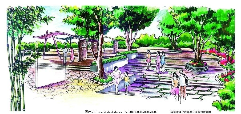 平面图 园林景观设计 小区 公园景观 景观园林 景观规划 树木 植物