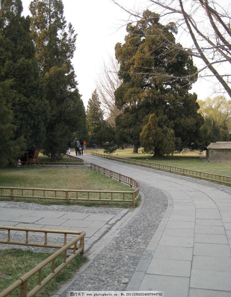公园区 大树 小路 草地 自然风景 自然景观 摄影 180dpi jpg