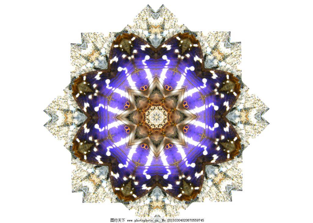 分形花纹图片