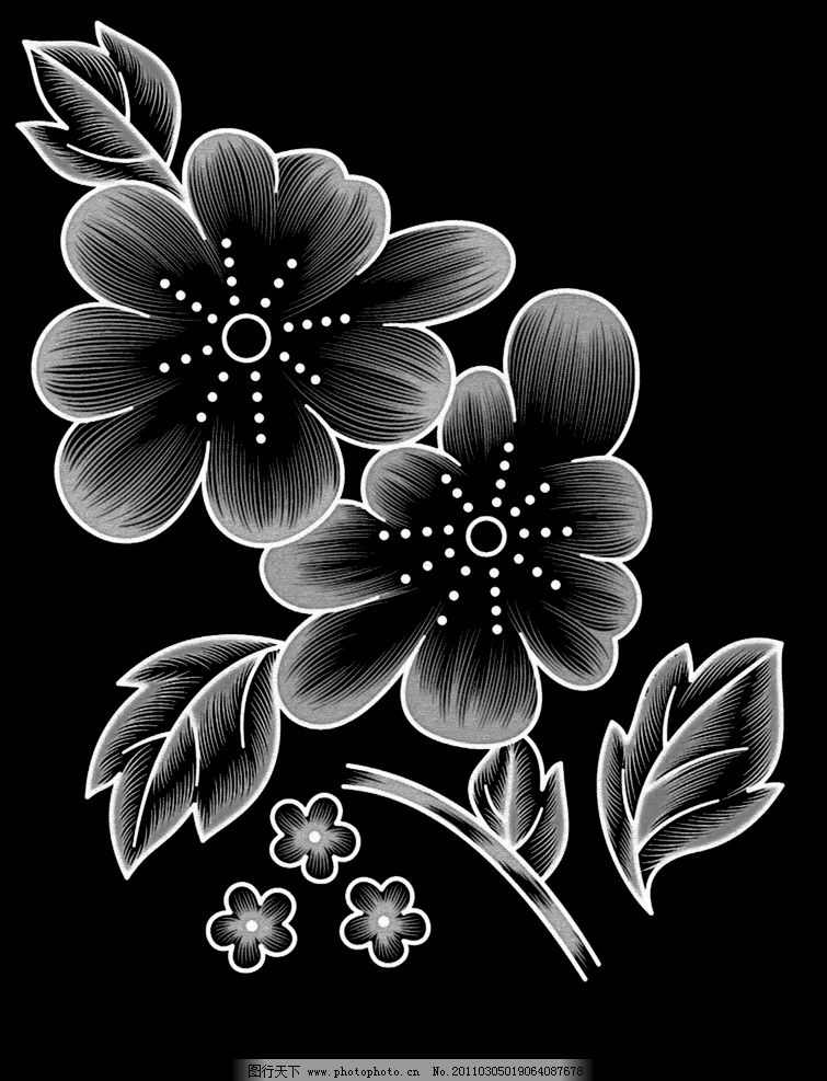 单色荧光花 黑白花纹