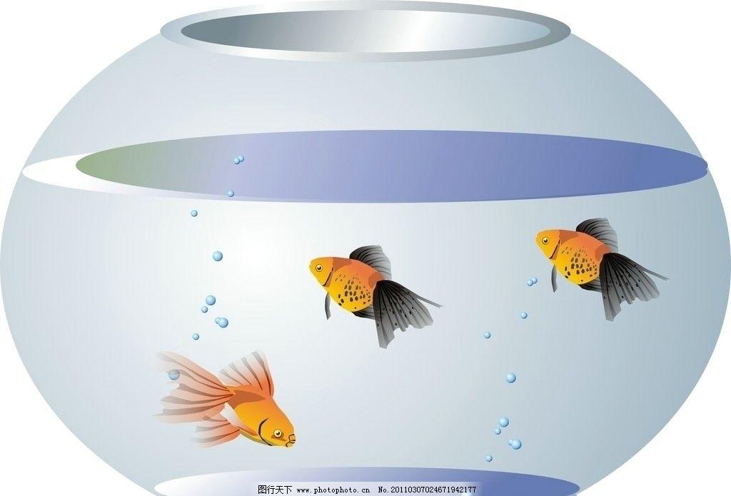 金鱼缸图片