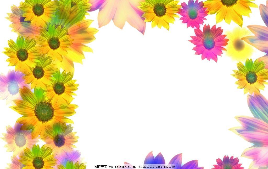 菊花底纹 菊花 底纹 边框 花 鲜艳 花草 生物世界 设计 300dpi jpg