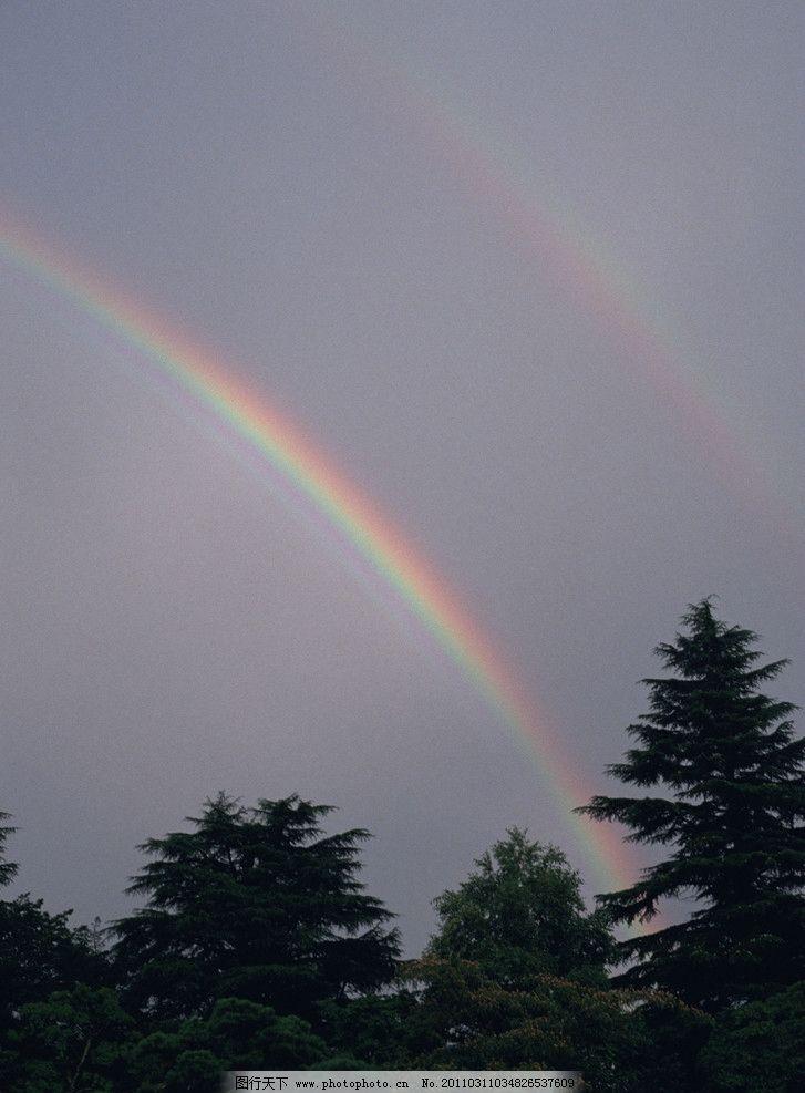 彩虹图片,雨后 天空 松树 自然风景 自然景观 摄影-图