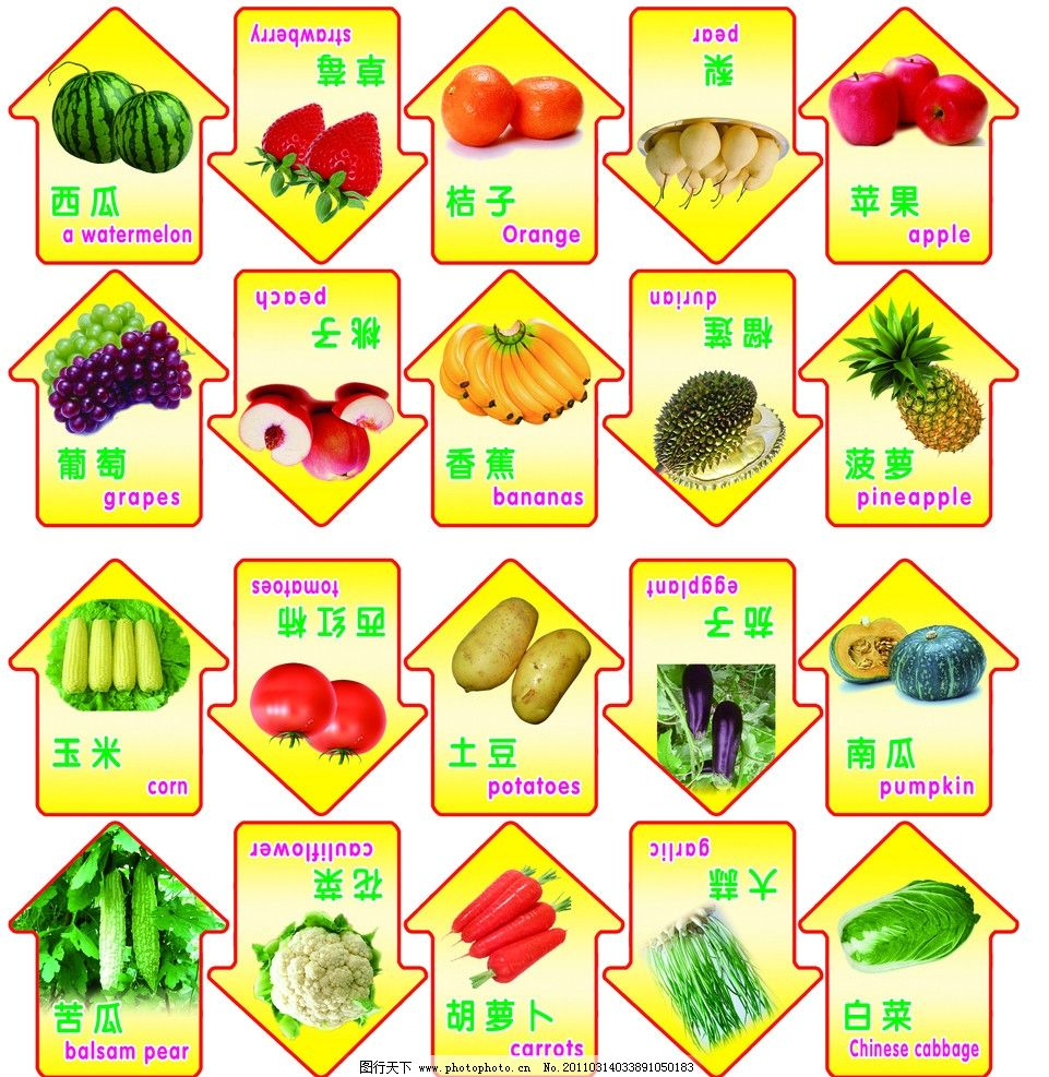 幼儿园水果蔬菜图图片