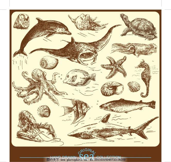 夏季海底生物手绘线稿素材 素描 海洋 动物 鱼类 牡蛎 章鱼 海马