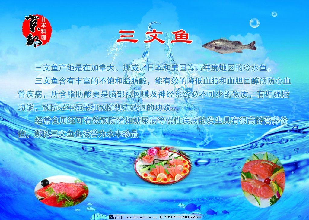 海报 宣传单 水牌 星级酒店餐饮推广海报 挪威三文鱼 三文鱼宣传海报