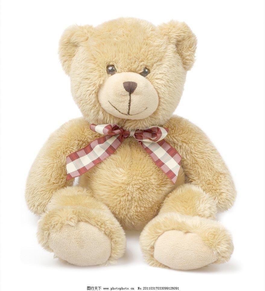 泰迪熊图片