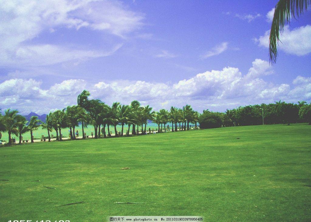 深圳红树林 红树林 深圳 国内旅游 旅游摄影 摄影 72dpi jpg