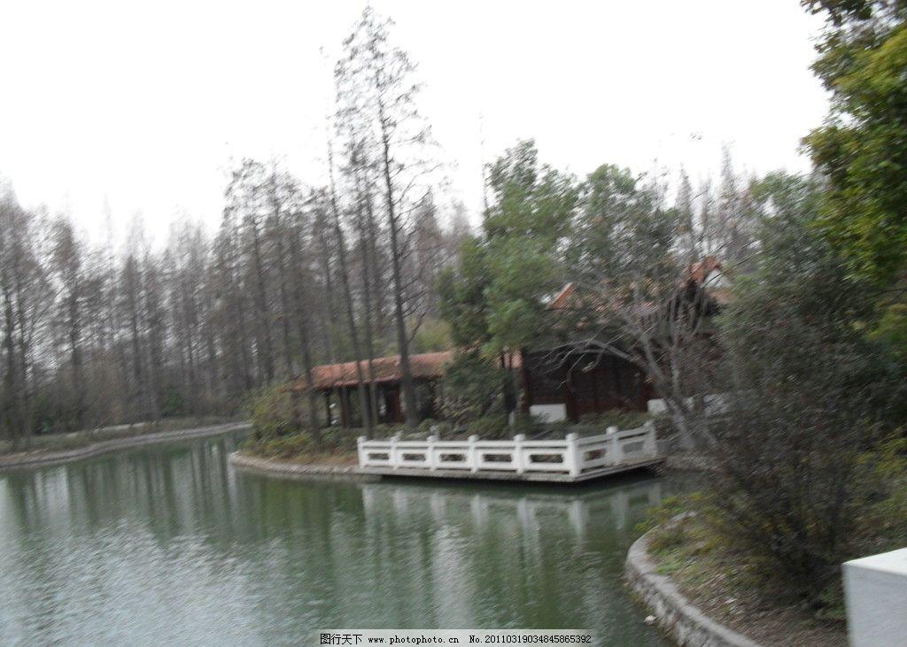 小桥 水 树 自然风景 自然景观 摄影 96dpi jpg