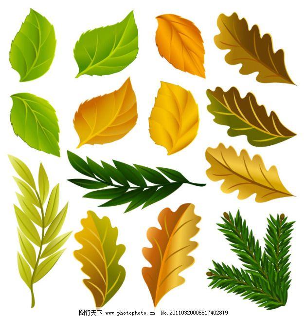 环保树叶图标免费下载 绿叶 树叶 树叶背景 树叶边框图片 树叶窗帘