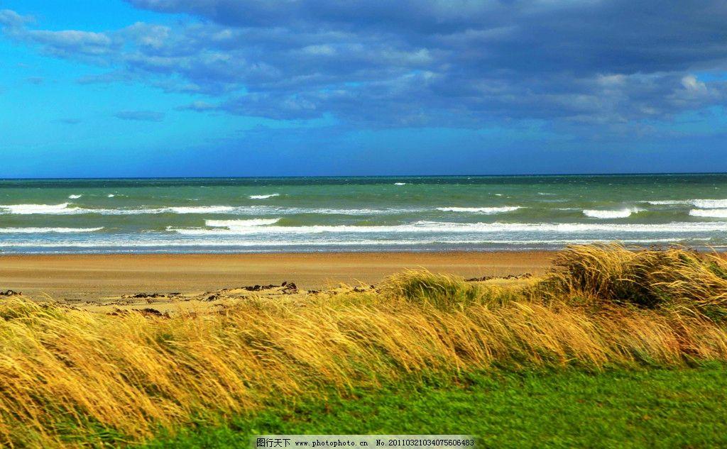 南岛风景 新西兰 南岛 大海 海边 草地 蓝天 白云 植物 风景 新西兰