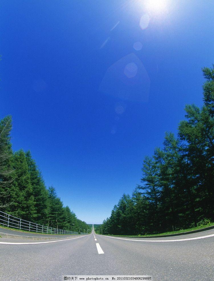 笔直公路树木 蓝天 阳光 道路 树林 风景 风光 大自然 高清风景