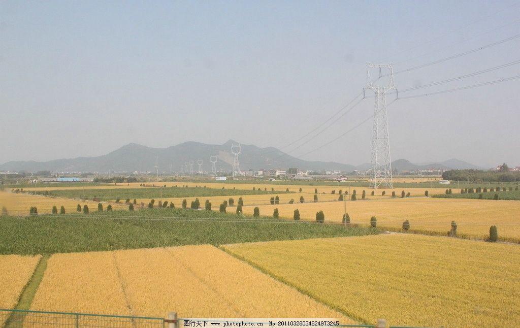 稻田 田野 田园 乡村 自然风景 自然景观 摄影 72dpi jpg