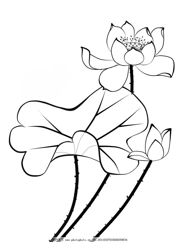 黑白 手绘花