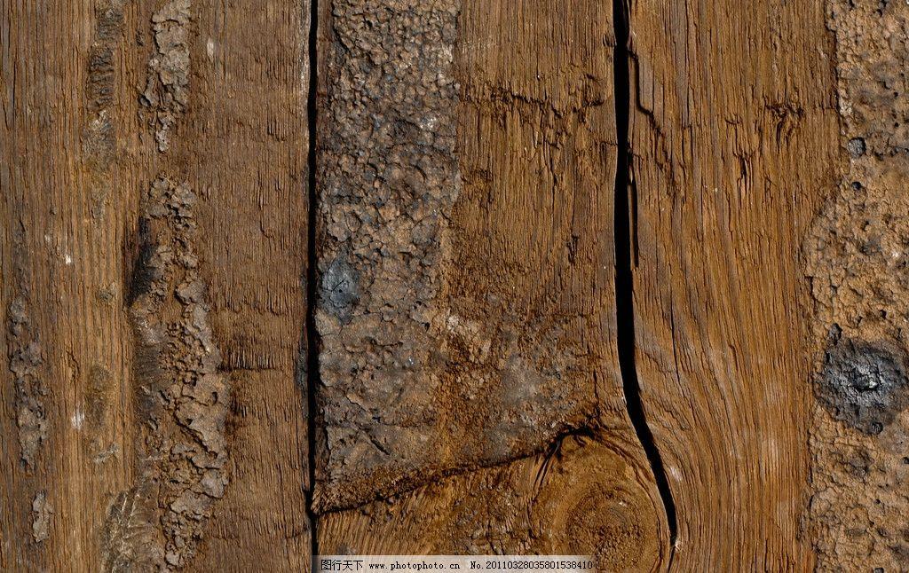 树木树叶  树木树纹高清图片 树纹 树木 木纹 木板 材质 木头 肌理