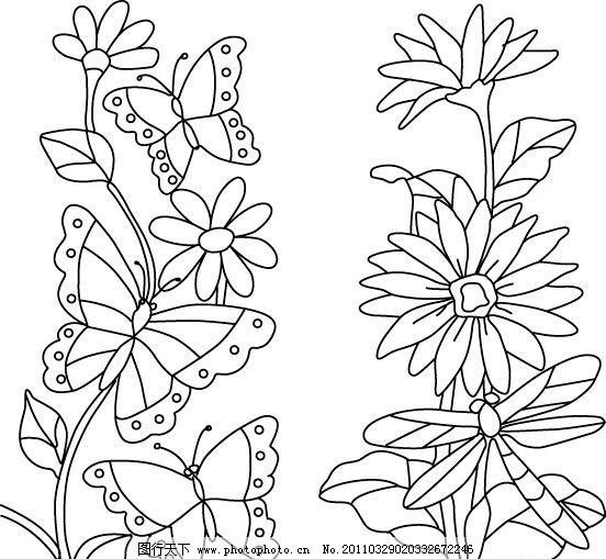 花边框简笔画-蜻蜓线稿