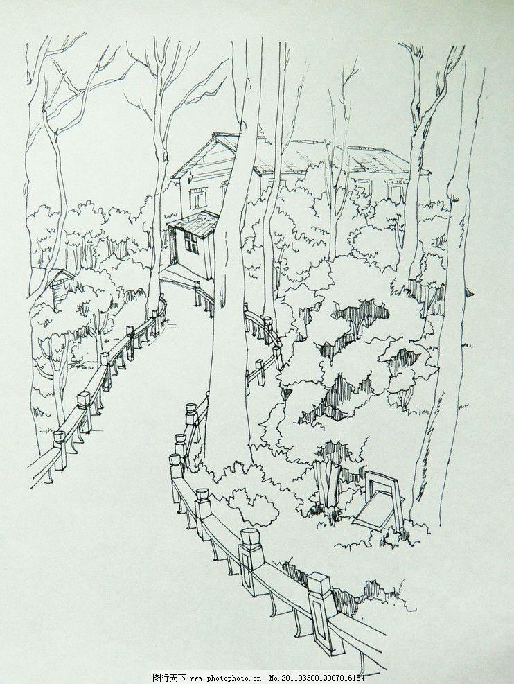 林荫小道手绘图图片