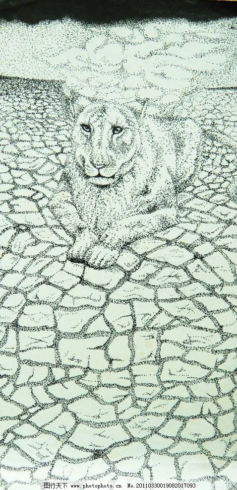 老虎手绘设计图 地球 干涸 老虎 土地 手绘 线描 绘画书法 文化艺术