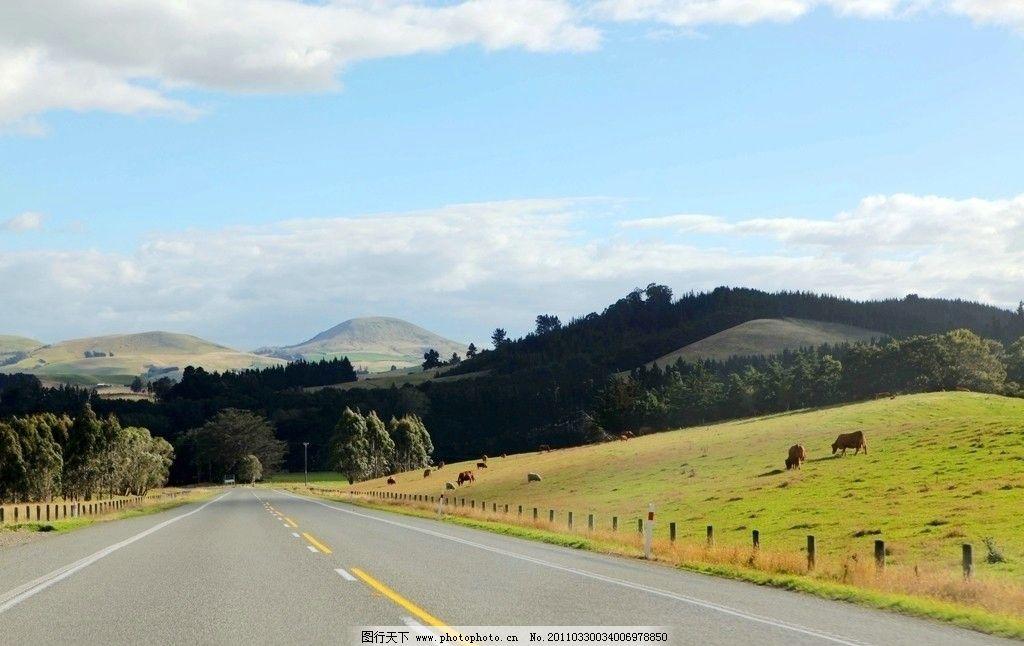 南岛风景图片