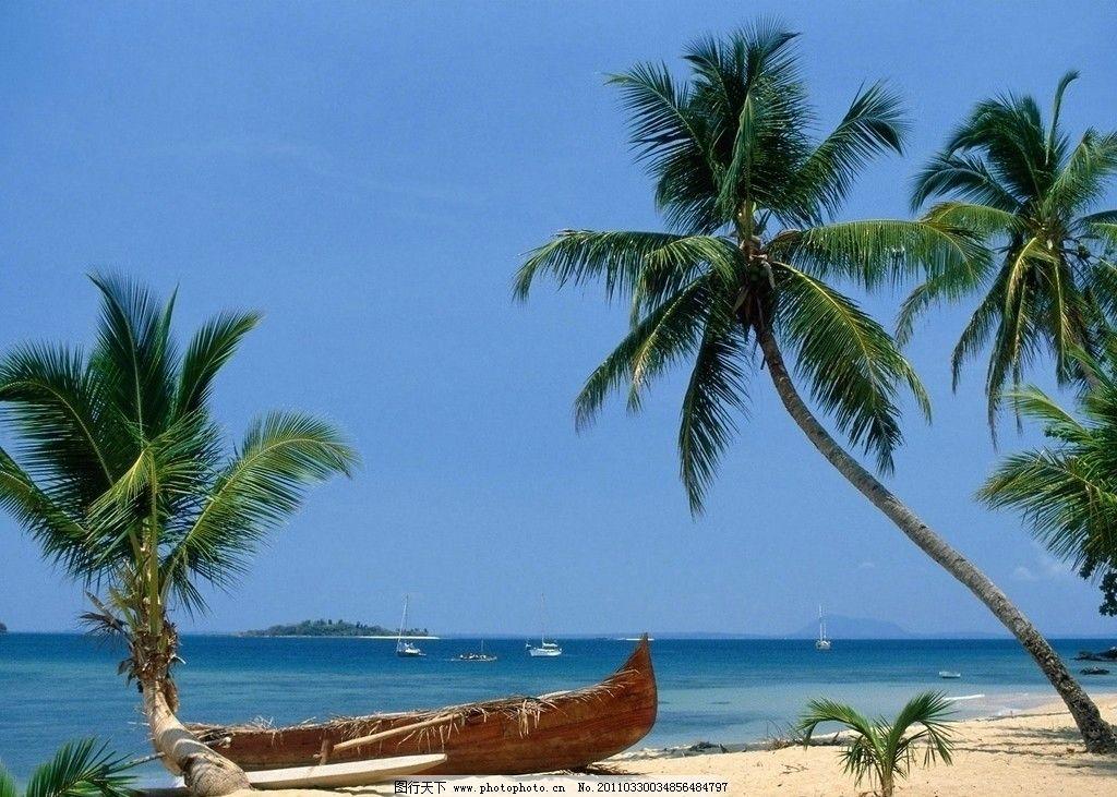 唯美 海边 海滨 风景 风光 蓝色 蓝天 白云 阳光 沙子 椰子树 叶子