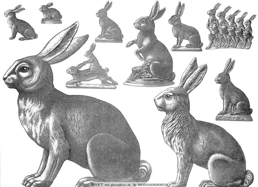 手绘兔子图片